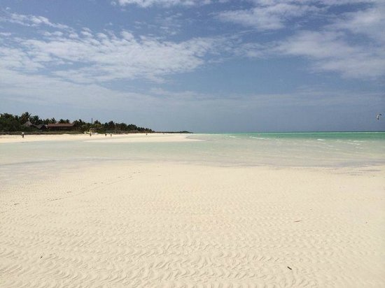 Melia Cayo Guillermo: beach