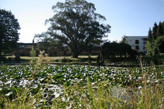 Lifehouse Hotel & Spa: Gardens