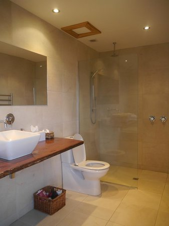 Curio Bay Accommodation: Walk-in shower at Beachhouse Apartment