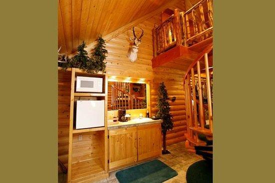 Black Swan Inn Luxurious Theme Suites : Rocky Mountain Cabin