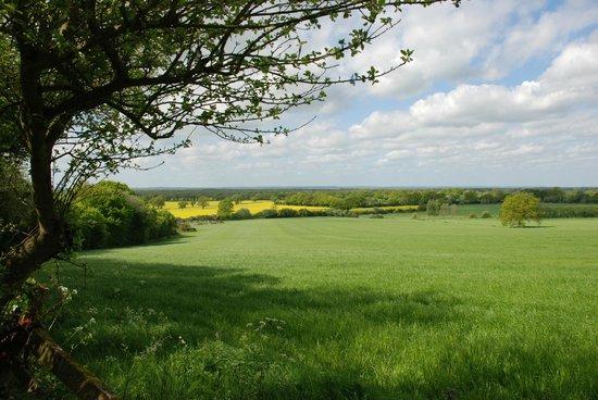 Elvey farm