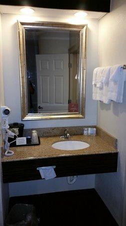 Sleep Inn Near Busch Gardens/usf: Sink