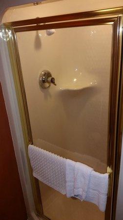 Sleep Inn Near Busch Gardens/usf: Shower