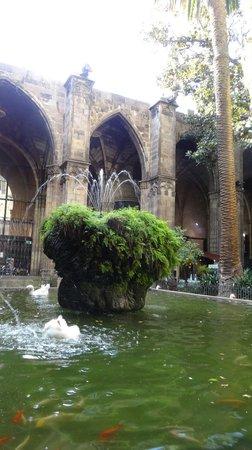 Catedral de Barcelona: Небольшой водоем, фонтанчики...и 13 гусей