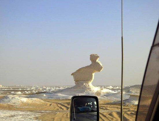 Western Desert Tours - Day Tour: White desert