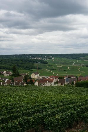 C La Vigne- Authentic Champagne Tour : Beautiful Countryside
