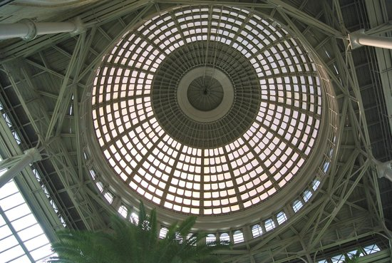 Ny Carlsberg Glyptotek : The roof