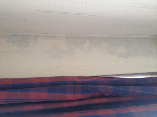 Best Western Welwyn Garden City Homestead Court Hotel: Mould (?) under wallpaper on wall behind curtain