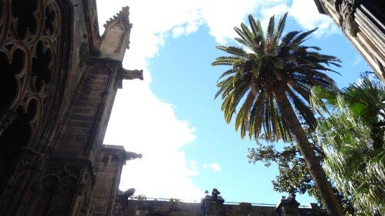 Catedral de Barcelona: Горгульи...