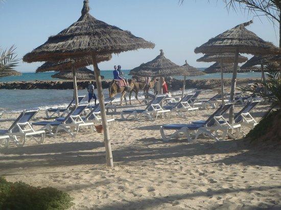 Hôtel Palm Azur : plage de l hotel