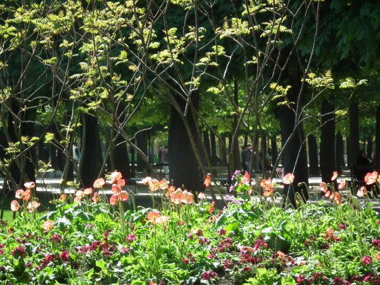 Hôtel Jardin Le Bréa : Taking a stroll through the pretty Jardin du Luxembourg