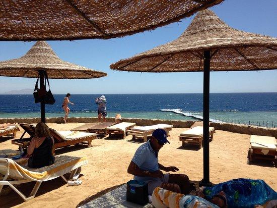 Mexicana Sharm Resort : Coral beach.