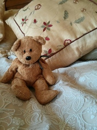 32 The Hythe B&B: Fuzz teddy to greet you