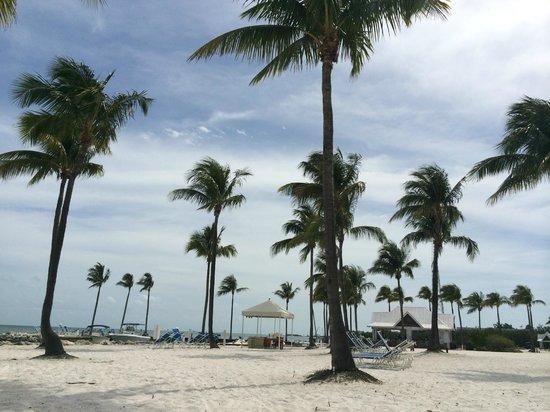 Tranquility Bay Beach House Resort: paradise