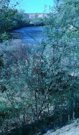 Courtyard Farmington : River Walk behind Courtyard