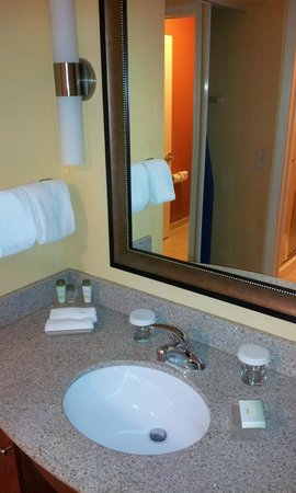Homewood Suites by Hilton Reno: Basin