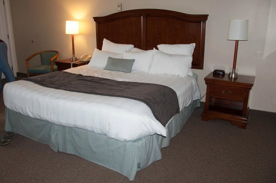 Holiday Hill Motor Inn: king sized bed