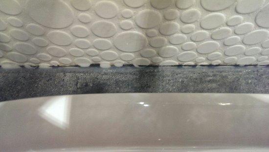 The George Hotel: Fungus behind bathroom sink