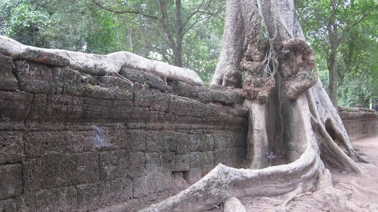 Viroth's Villa: Temple