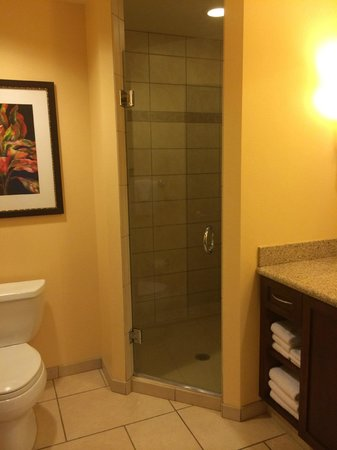 Marriott's Maui Ocean Club  - Lahaina & Napili Towers: stand up shower