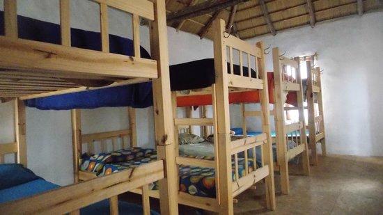 El Indio Hostel: Cuarto compartido