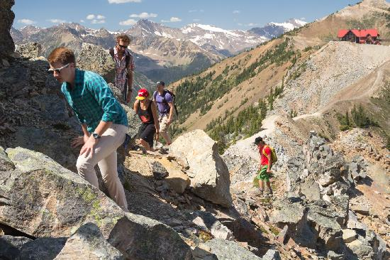 Golden, Canada: Fantastic ridge hikes at Kicking Horse Mountain Resort.