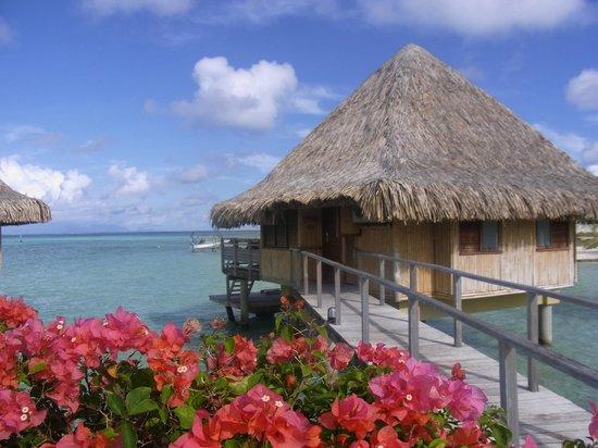 InterContinental Bora Bora Le Moana Resort: 外観