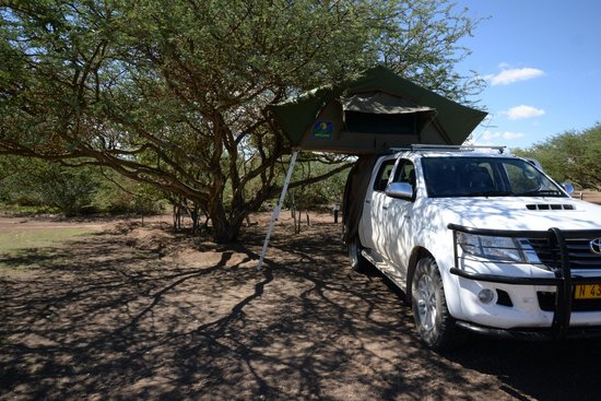 Quivertree Forest Rest Camp : Campsite