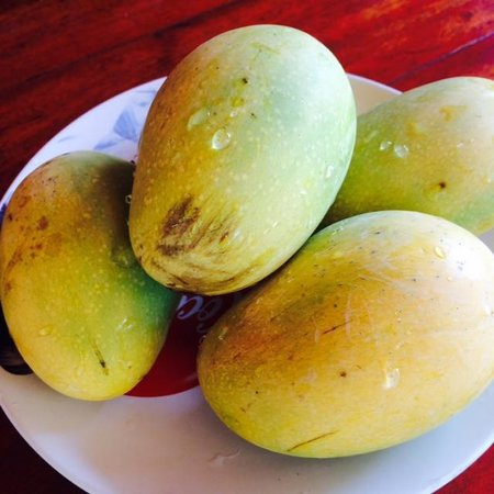 Asia Bungalows: Daily dose of fresh mangoes! Yumm!!