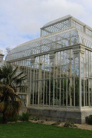 National Botanic Gardens: large enough for full grown trees inside