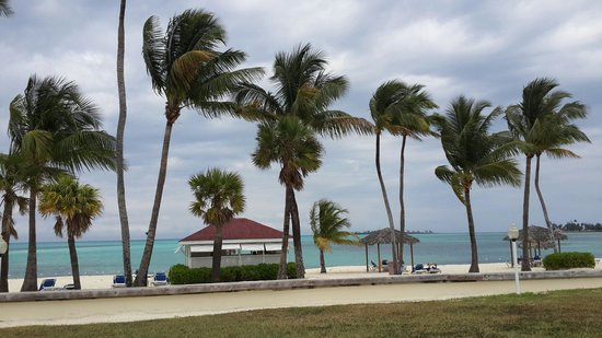 Breezes Resort & Spa Bahamas : Maravillosa vista