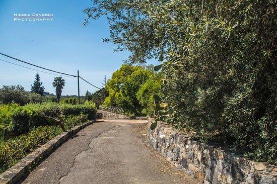 Antico Borgo Agriturismo B&B: Foto 7