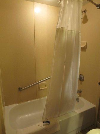 BEST WESTERN PLUS St. Christopher Hotel: shower