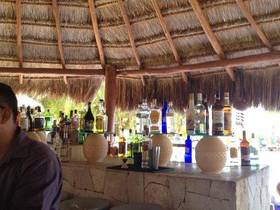 Ocean Maya Royale: Lots to choose from