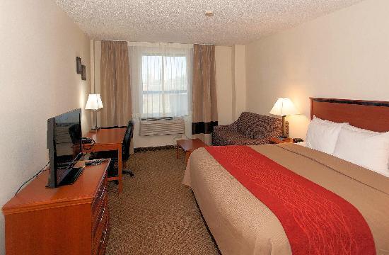 University Inn Midtown: Standard King Room