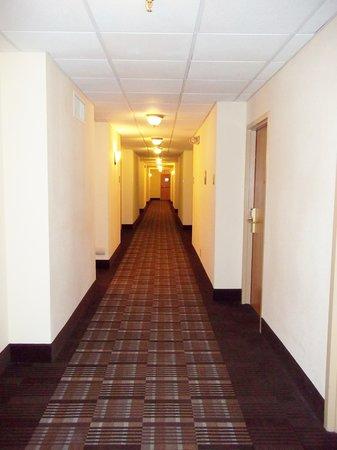 University Inn Midtown: Interior Corridors