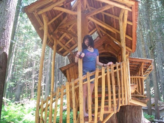The Enchanted Forest: fun