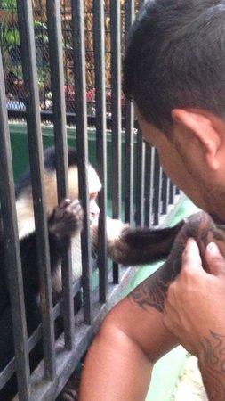 Casa Lima B & B : Don kiko i gusta il mio tattoo