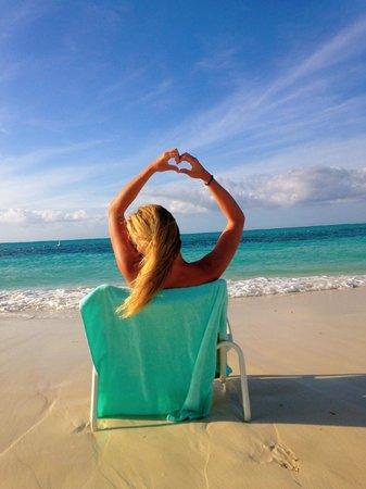 Gansevoort Turks + Caicos: beach