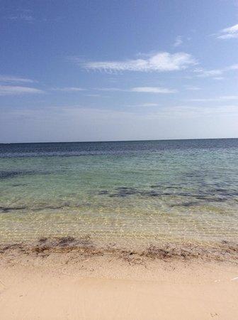 Catalonia Bavaro Beach, Casino & Golf Resort: Amazing beach