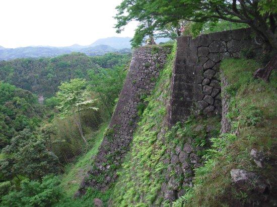 Ruins of Oka Castle: すごい絶壁