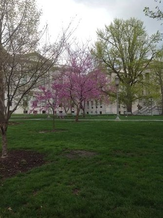 Pennsylvania State Capitol: Springtime at theCapitol