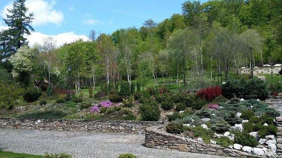 Villa Elise Park Pension: garden and pariking