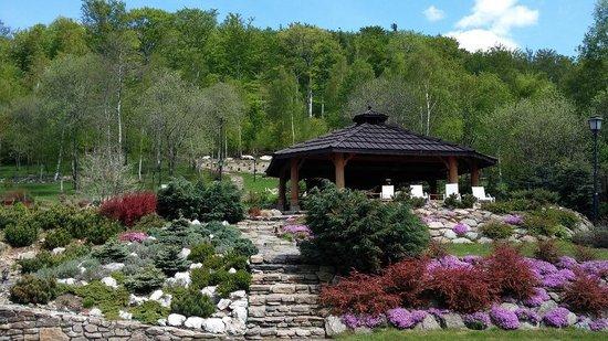 Villa Elise Park Pension: garden