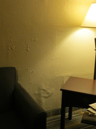 Clarion Hotel Historic District: Blistering walls in room