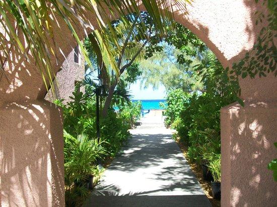 Osprey Beach Hotel: Hotel Grounds