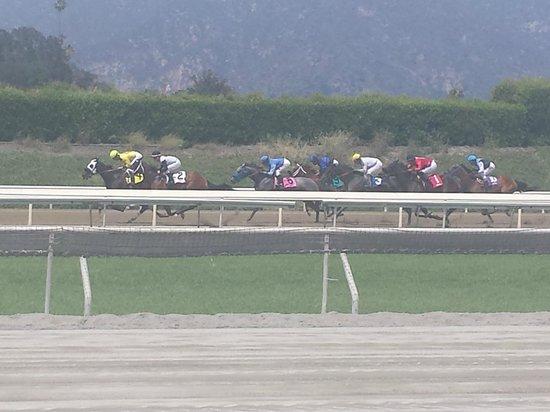 Santa Anita Race Park: races