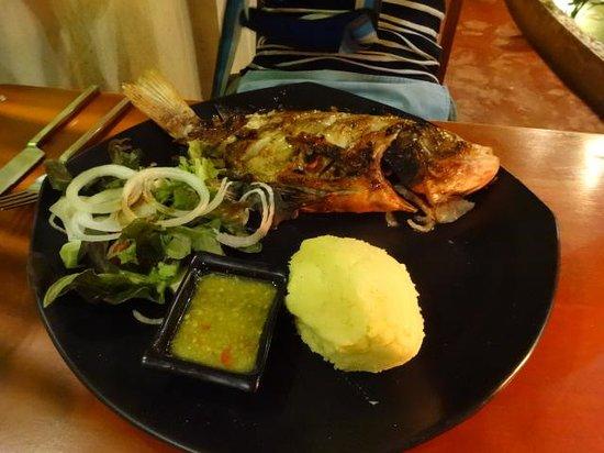 Luna Lounge Thong Nai Pan Noi: お魚料理