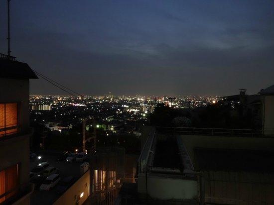 Hotel Seiryu : 景色
