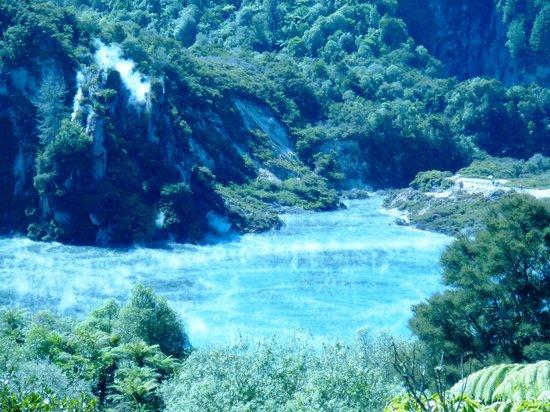 Waimangu Volcanic Valley: Steaming lake